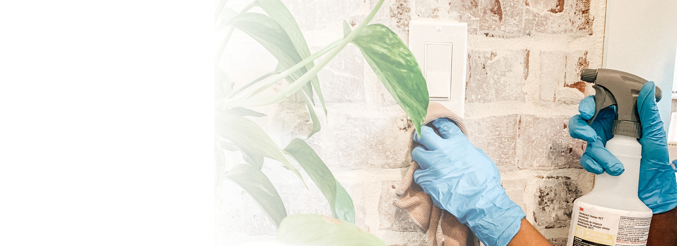 Our New Enhanced Disinfection Services are designed to help fight against harmful germs.